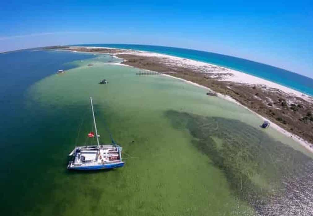 Panama City Beach Shell Island Dolphin