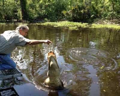 Swamp Tour New Orleans >> My First Swamp Tour 91 Reviews Of Manchac Swamp Tour With
