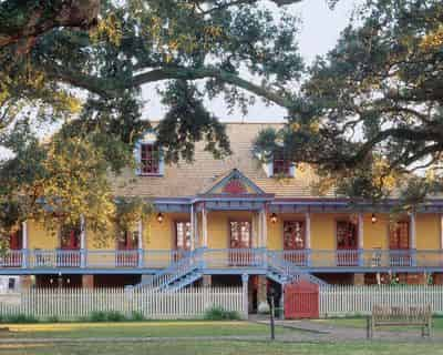 Laura or Oak Alley Plantation Admission & Guided Tour with Transportation From New Orleans Area Hotels