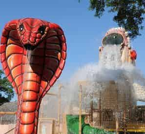 New Orleans Cool Zoo Water Park and Audubon Zoo Combo Ticket