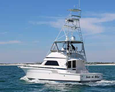 Private Fishing Excursion with Into The Blue