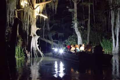 Honey Island Sunset Swamp Boat Tour with Optional Transportation