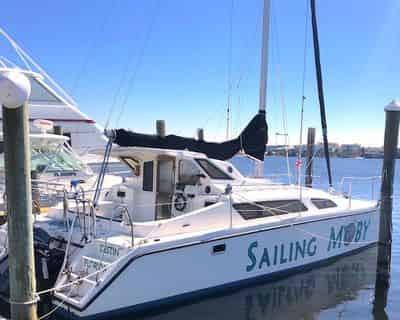 4 Hour Daytime Sail with Sailing Moby