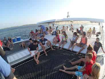 Dolphin & Snorkel Cruise with Cattywampus Aquatic Adventures
