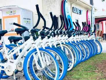 3 Day Bicycle Rental with WET Inc.