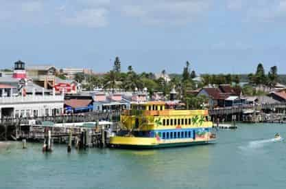 Calypso Breeze Tropical Themed Afternoon Cruise with Optional Buffet