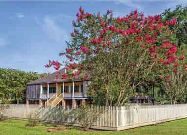 Laura Creole Plantation & Pontoon Swamp Boat Tour with Transportation