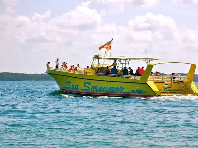 Panama City Beach Dolphin Cruises