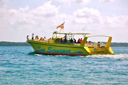 Shell Island Snorkel and Swim Excursion on the Sea Screamer 2