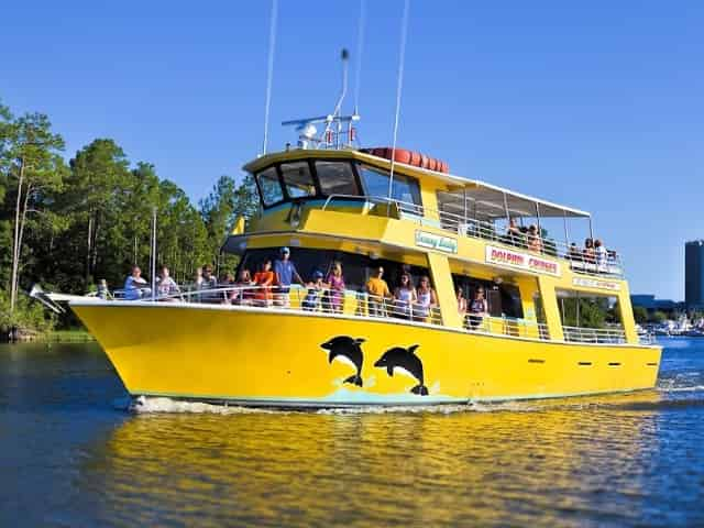 orange beach dolphin cruise for kids