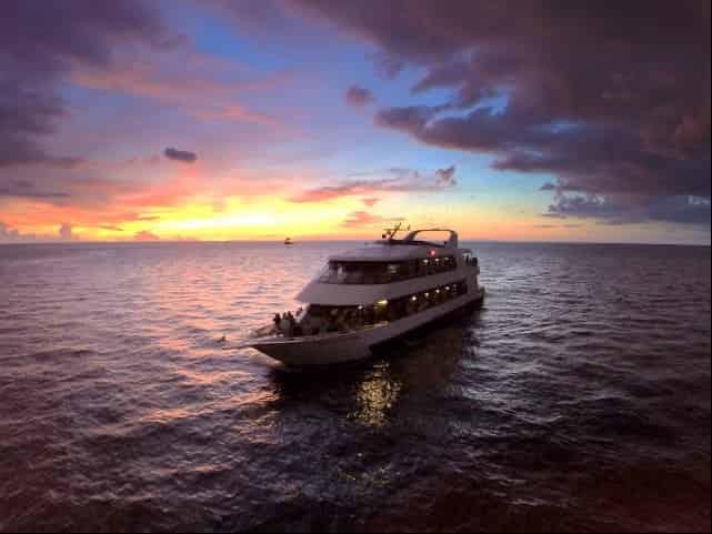 starlite sapphire yacht cruise clearwater