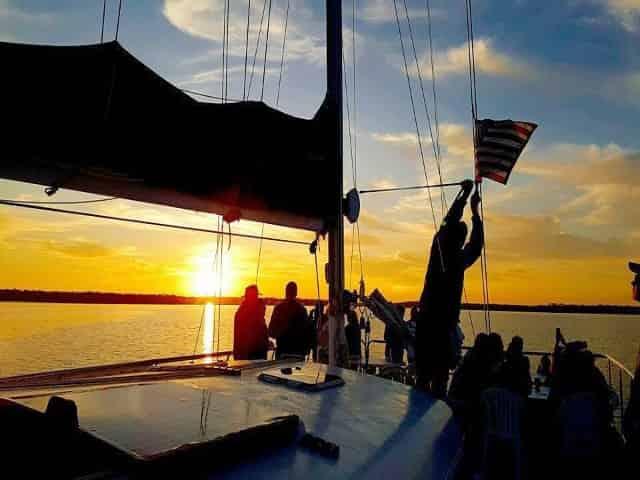 Cetacean dolphin cruise alabama