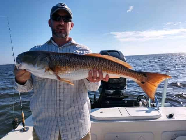 fishing in clearwater, fl