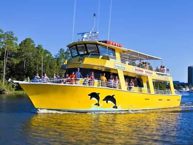 gulf shores dolphin cruise