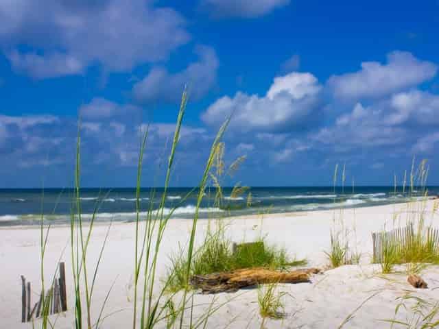 beaches of gulf shores, al