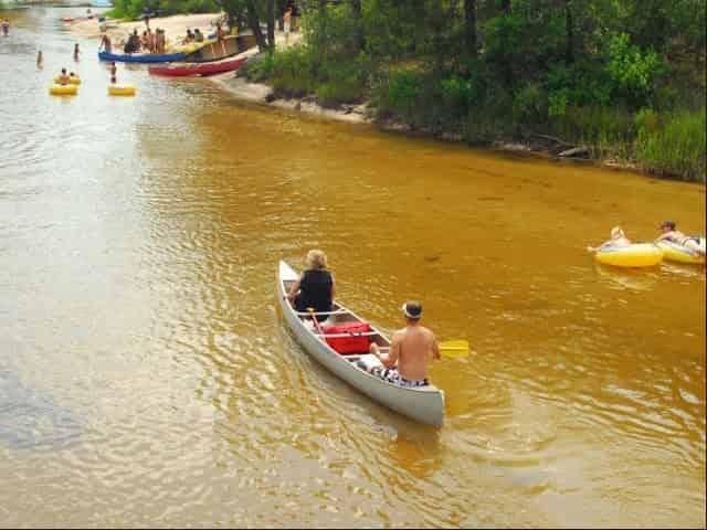blackwater river canoe rental