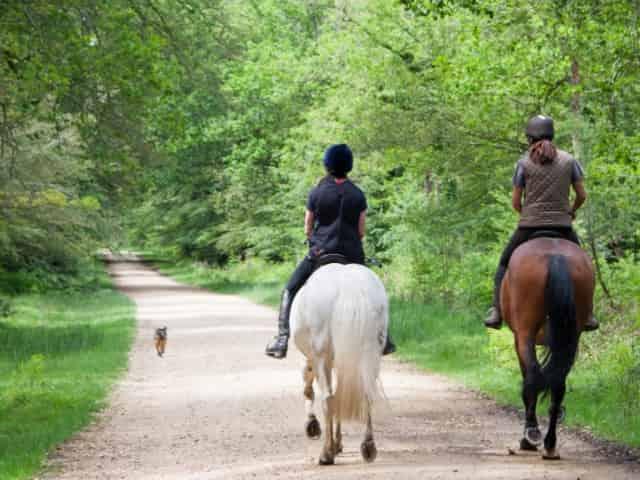horseback riding in 30a
