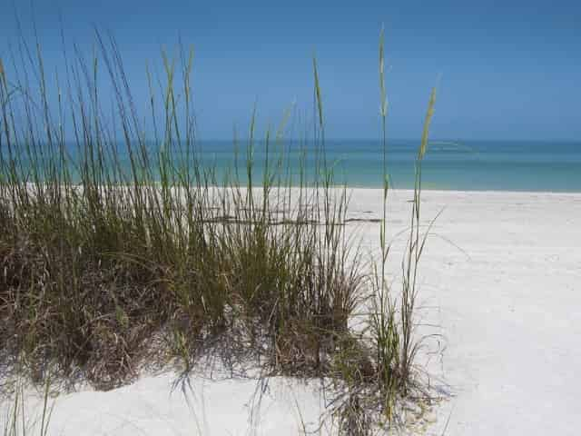 sand dunes in 30a florida