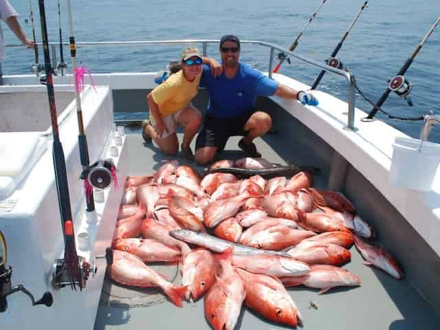 red snapper season in florida