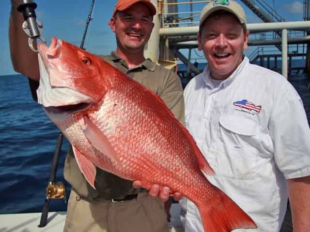 Red Snapper caught in Florida