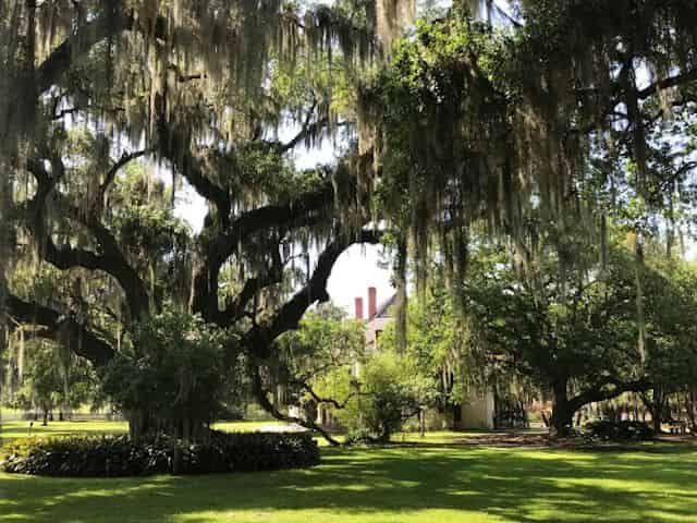 st joseph and felicity plantation in film