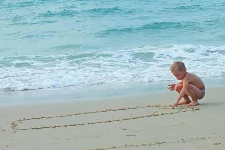5 Kid-Friendly Wildlife Encounters in Panama City Beach, FL
