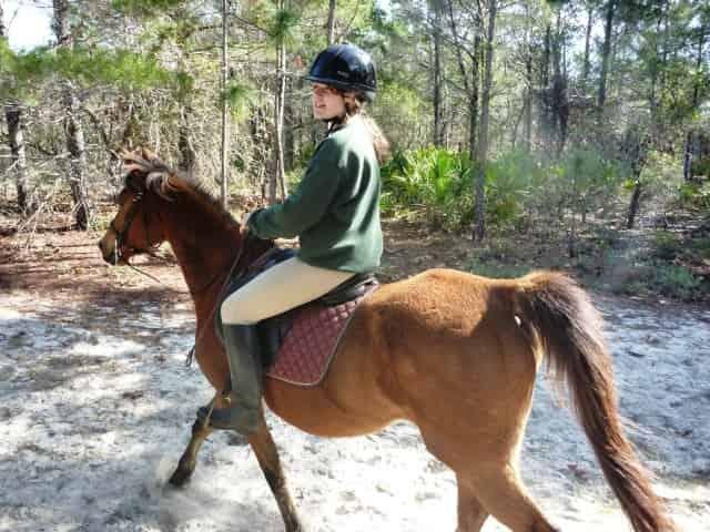 horseback riding in seaside, fl
