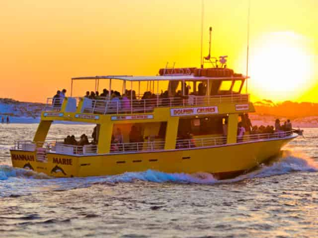 dolphin cruise in destin during winter