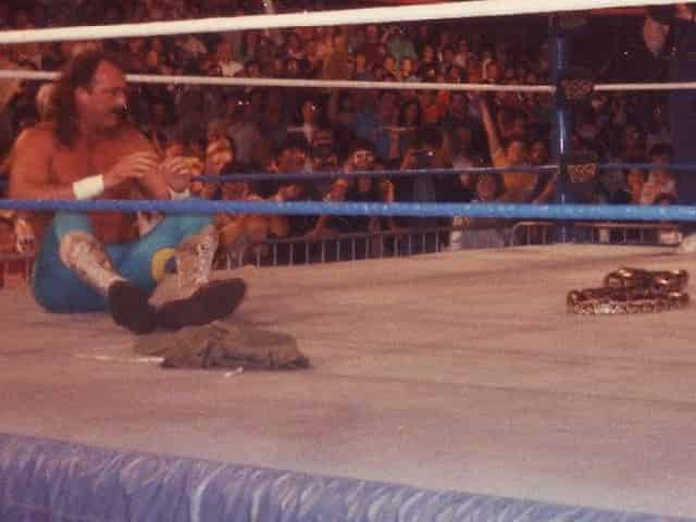 jake the snake roberts in the ring