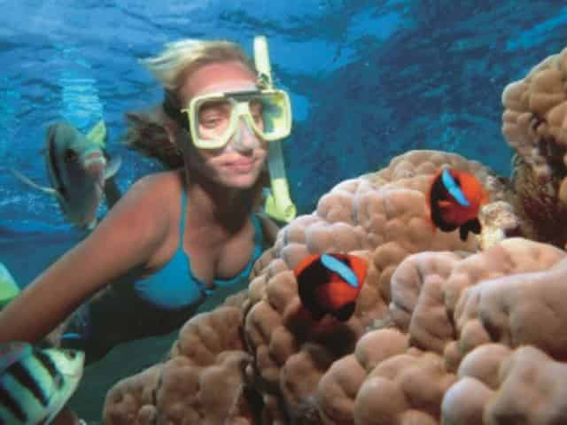 woman snorkeling in miami, fl