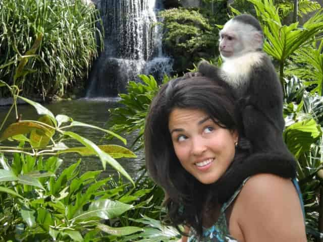 jungle island adventure in miami, fl