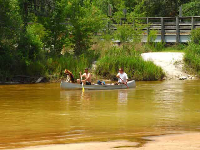 people canoeing at blackwater in milton florida