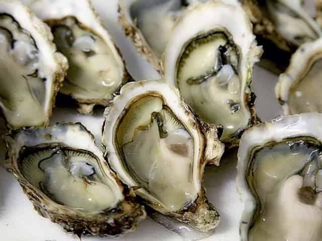 acme oyster house sandestin fl
