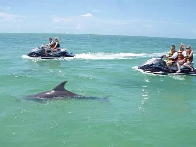 miramar beach dolphin tour on waverunners