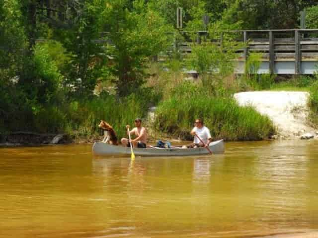 canoeing down blackwater river in milton