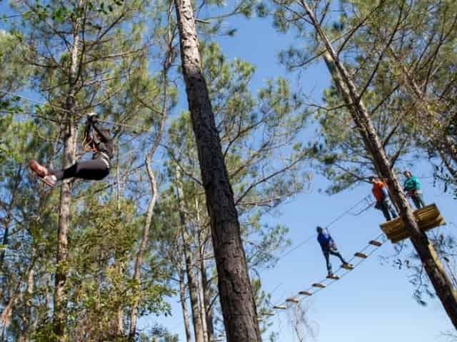 ziplining in milton