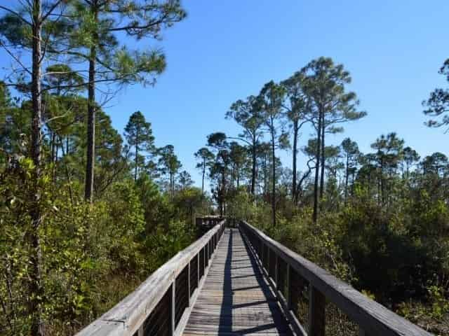 Nature trail in Pensacola, FL