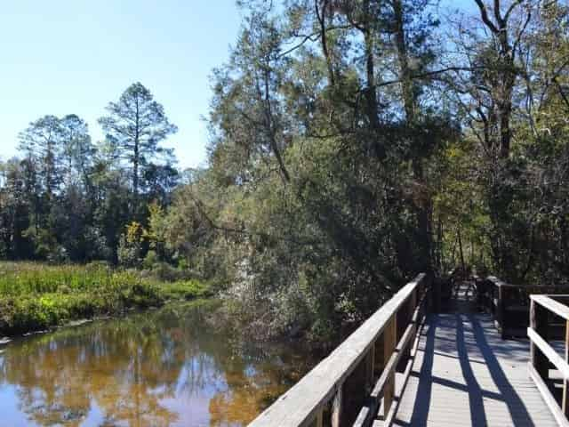 Edward Ball Nature Trail in Pensacola, FL