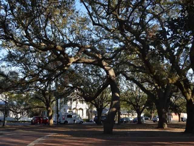 Seville Square in Pensacola, FL