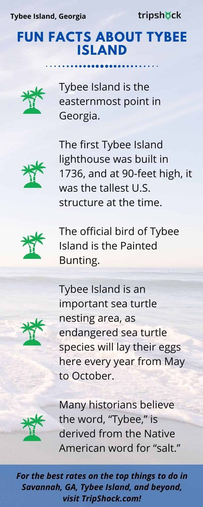 Fun Facts About Tybee Island