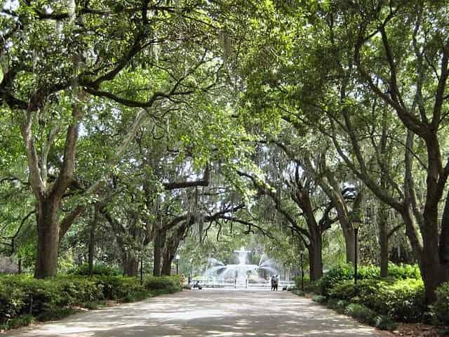 Forsyth Park in Savannah, Georgia