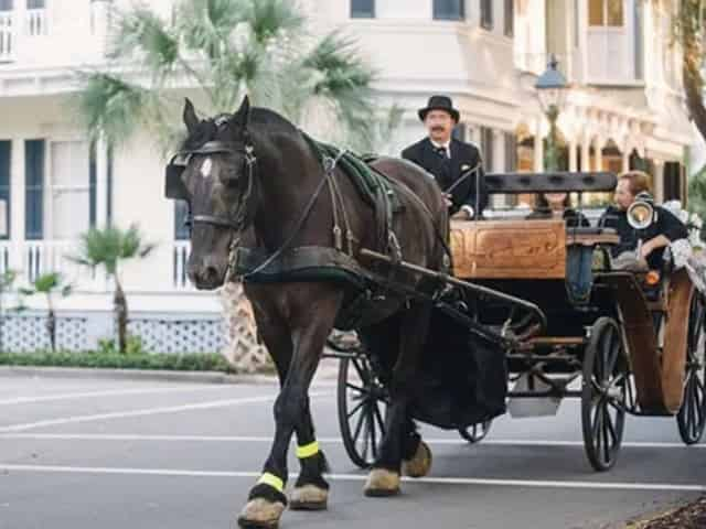 Couple on a Carriage Tour of Savannah