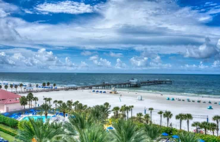 8 Delightful and Unique Things to Do in Clearwater, FL
