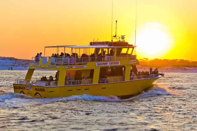 sunset harbor dolphin cruise destin fl