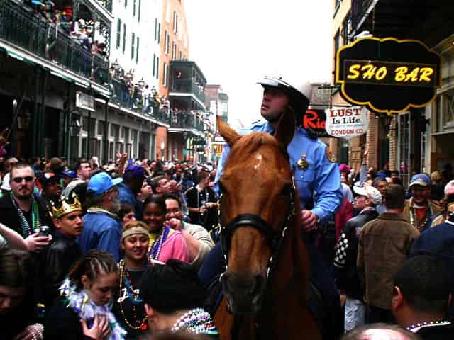 police on horse during mardi gras