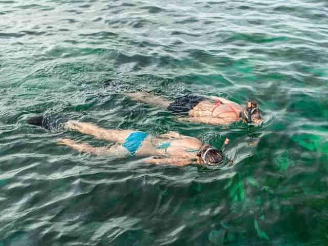 snorkeling in key west florida
