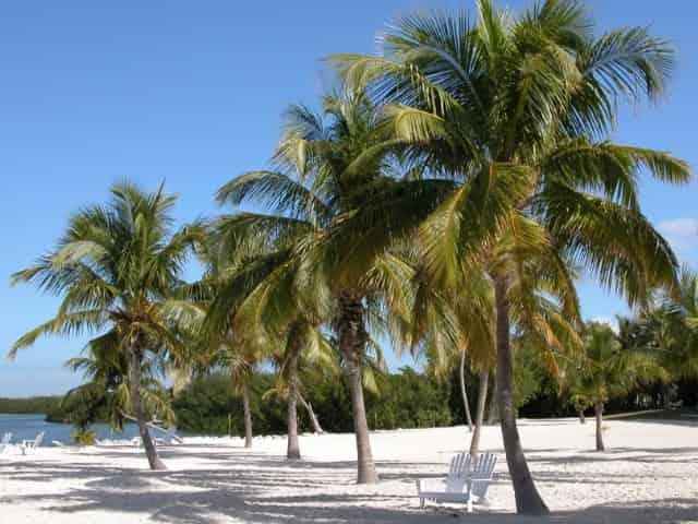 island of islamorada florida