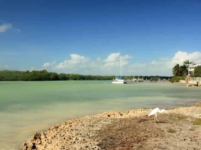 marathon florida shoreline