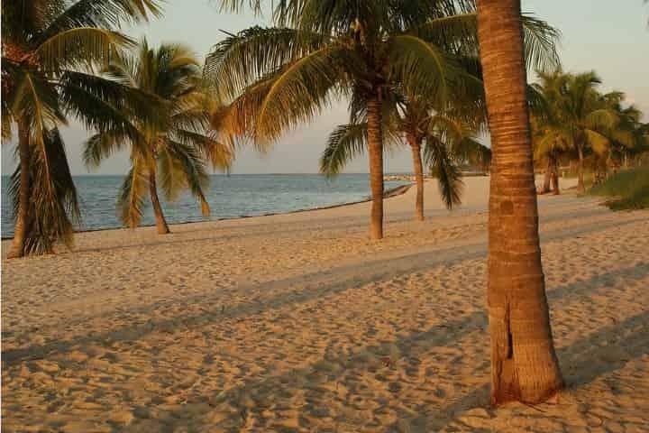 Florida Keys Islands Guide (w/ Beach Info, Photos & Attractions)