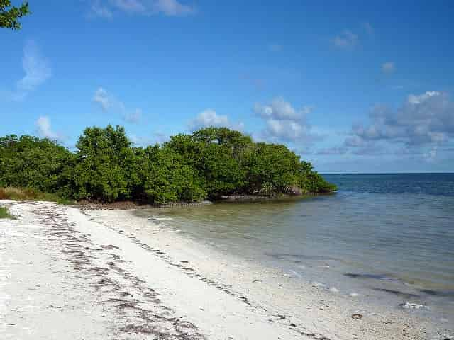 annes beach in islamorada fl
